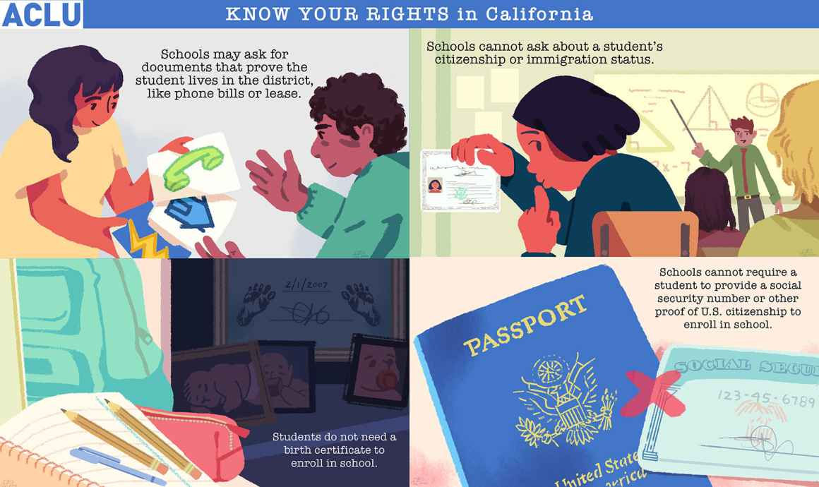 Immigration and students - Know your rights