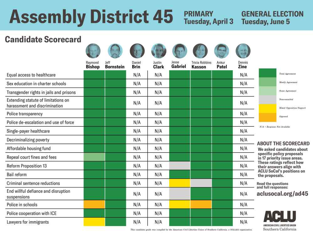 Assembly district 45 candidate scorecard