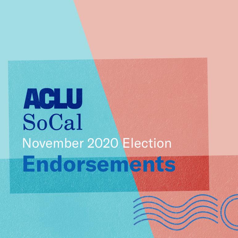 Endorsements November 2020 Election
