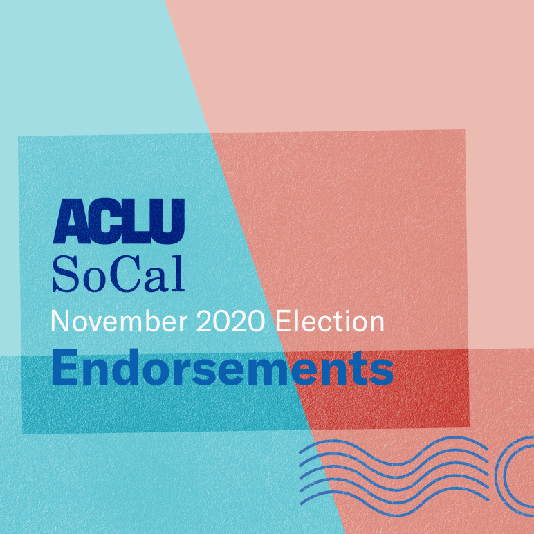 Endorsements November 2020 Election